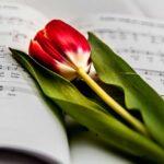 El Arte de Crecer y Florecer en Tiempos de Adversidad. Orquesta en Casa.